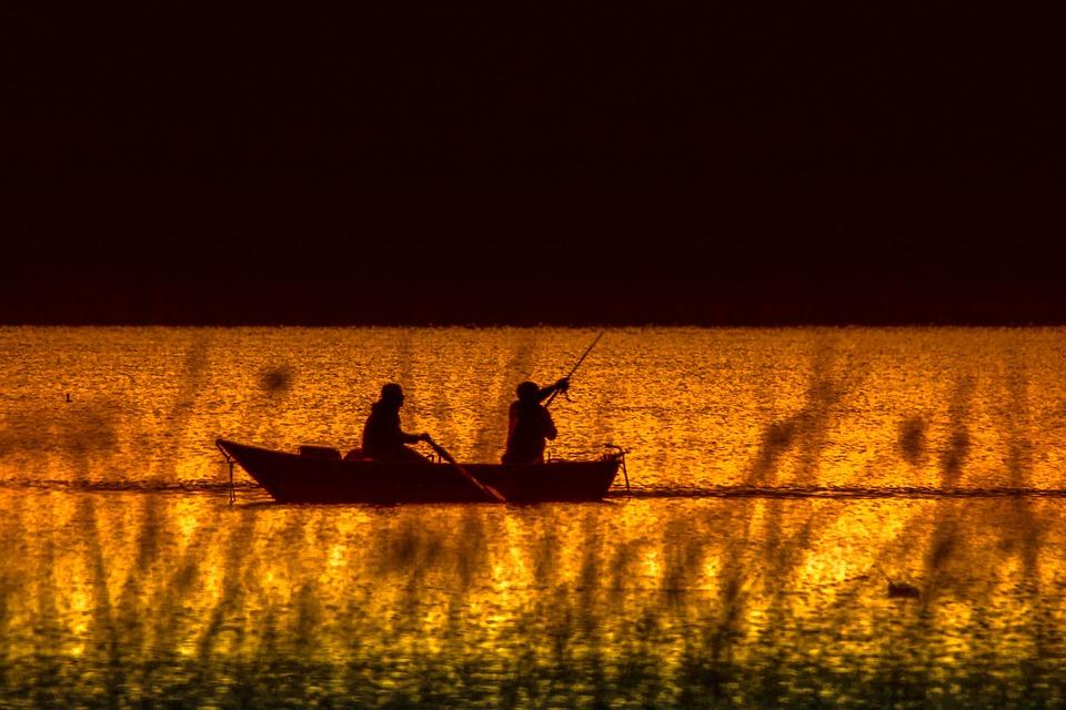 Fishing Boat, Fisherman, Nature, Lake, Fish, Angler