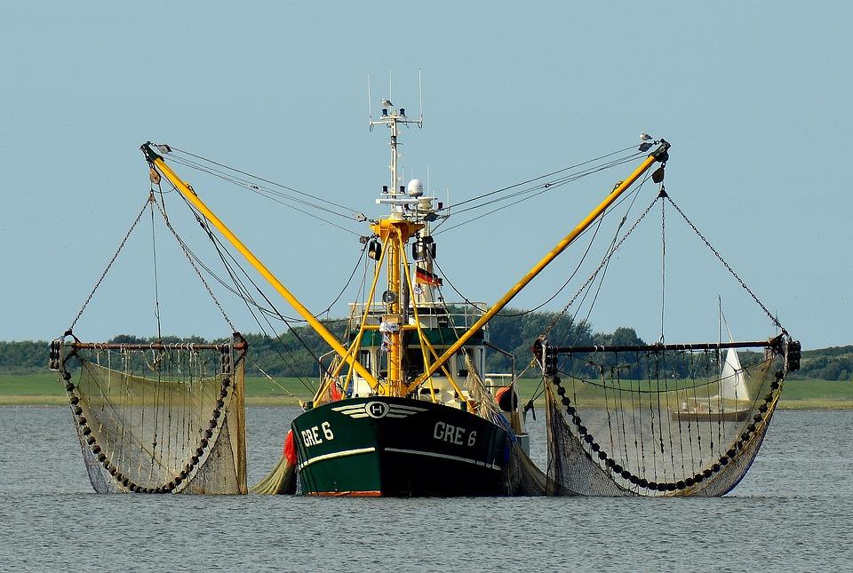 Fishing Boat, Fishing, Fishing Vessel, Fischer, Fish