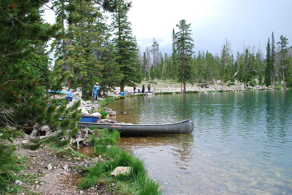 Fishing, Lake, Rod, Leisure, Vacation, Outdoor, Fish