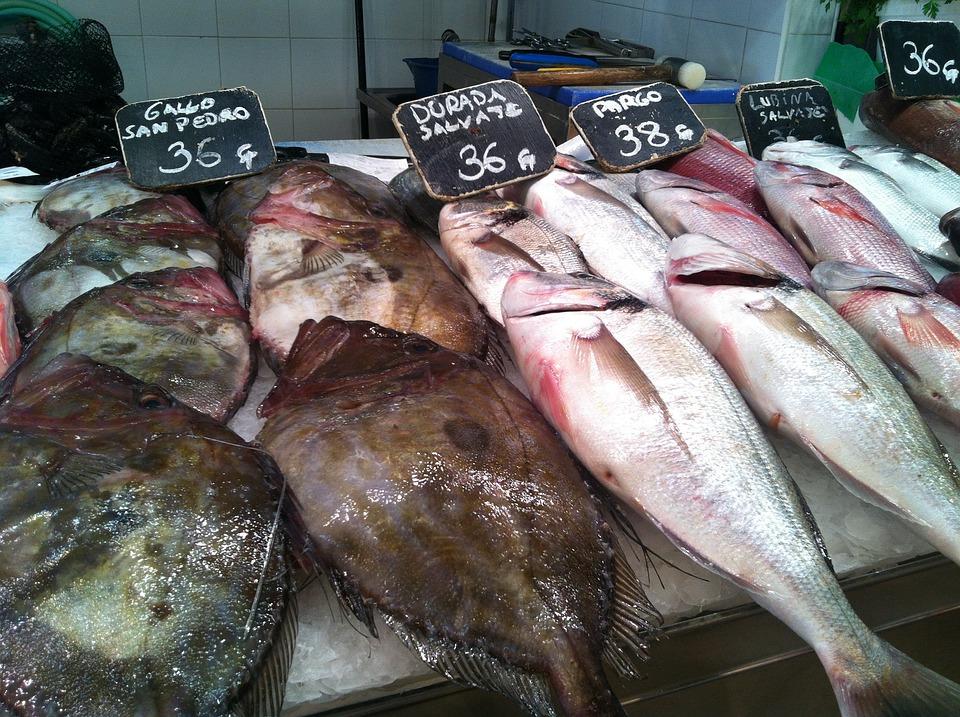 Fish Market, Fish, Food, Market, Sea Animals, Frisch