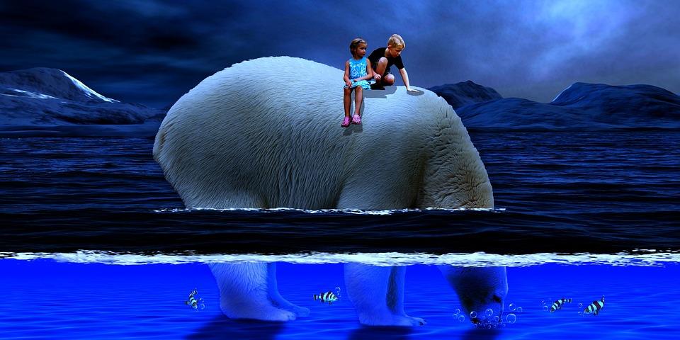 Polar Bear, Sea, Children, Ocean, Fish