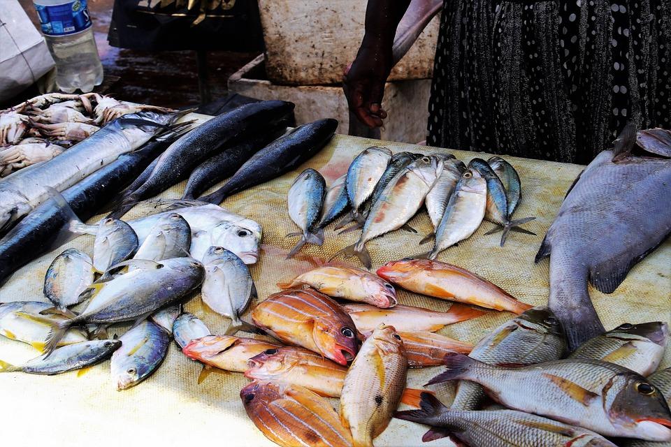 Fish Market, Fish, Seafood, Sea, Eating