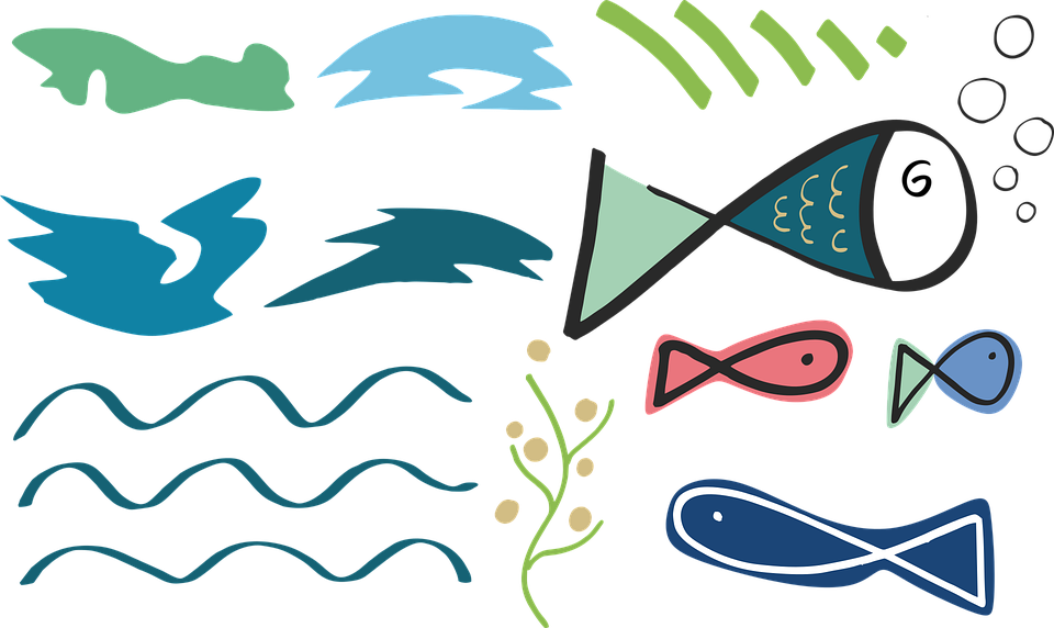 Fish, Sea, Shapes, Ocean, Water, Diving, Nature, Blue