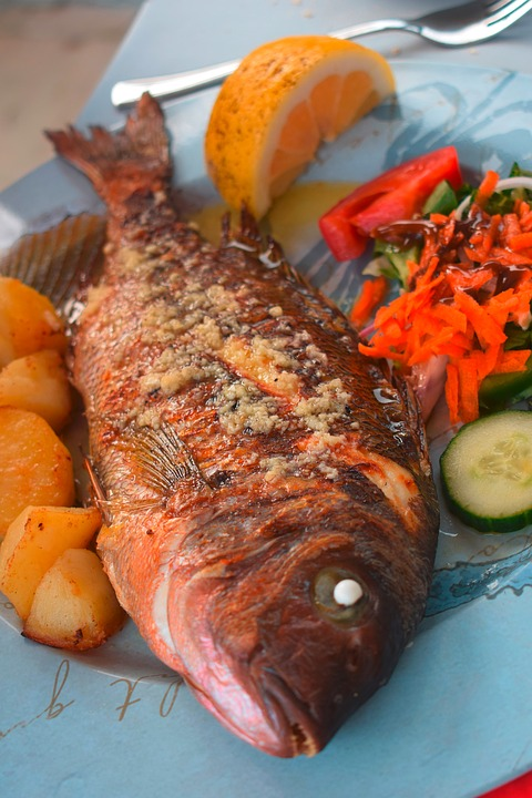 Fish, Sea Bream, Eat, Food, Healthy, Court, Tasty