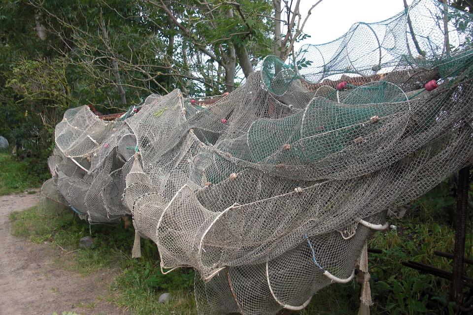 Fishing Net, Fish Traps, Fish