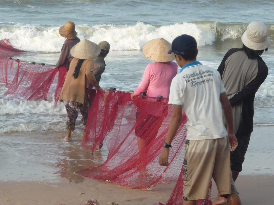 Fishing, Vietnam, Fisherman, Beach, Culture, Fish