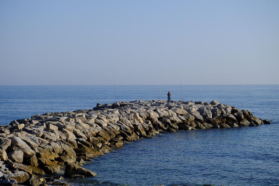 Man, Fishing, Fish, Fisherman, Nature, Water, Summer