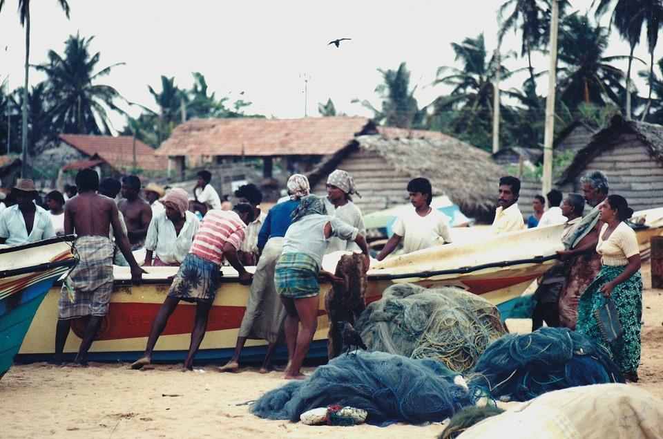 Fishermen, People, Fisher, Fishing Village, Colombo