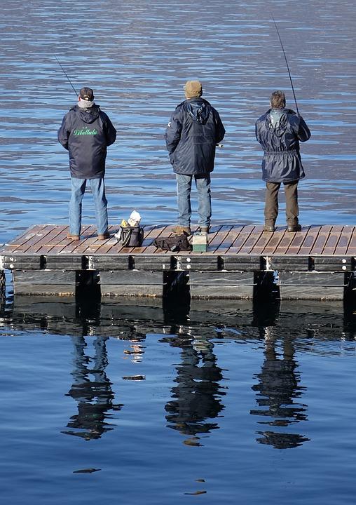 Fishing, Fishermen, Water, Marina, Fisherman, Lake