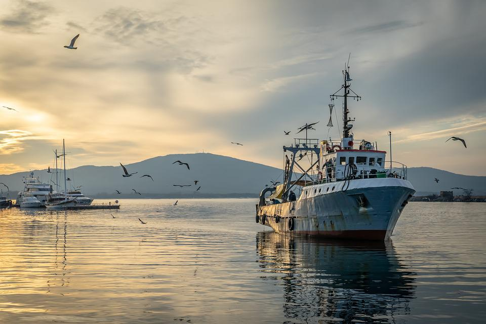 Fishing Vessel, Fisherman, Fishing, Ship, Vessel, Ocean