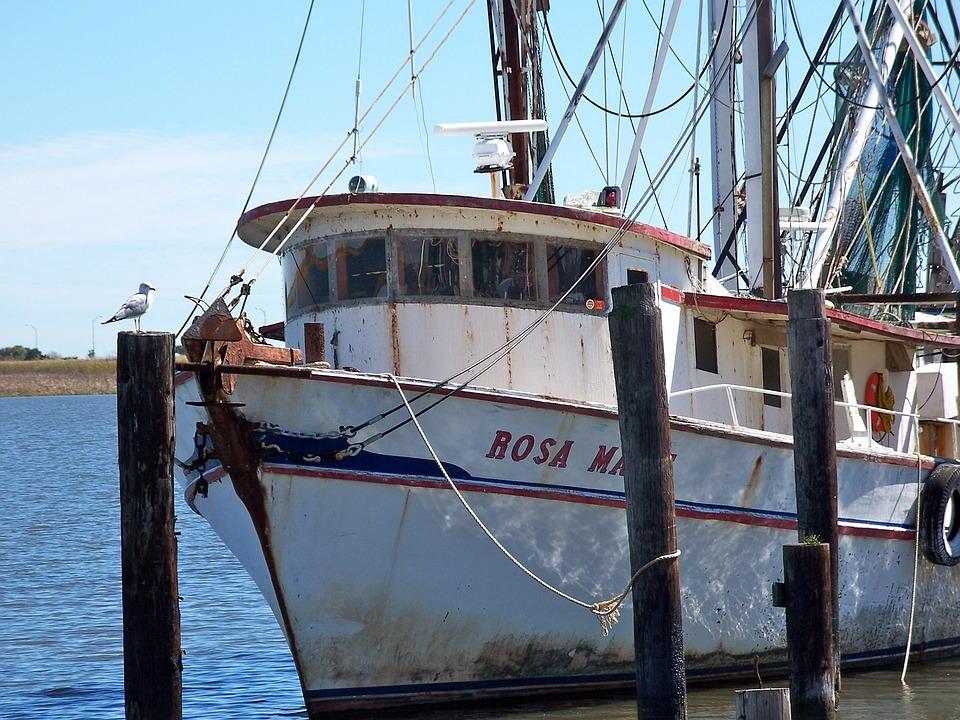 Apalachicola, Boats, Florida, Water, Fishing Boat