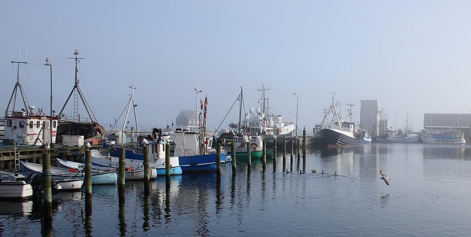 Port, Fishing Boat, Ship, Morning, Fyn, Kerteminde