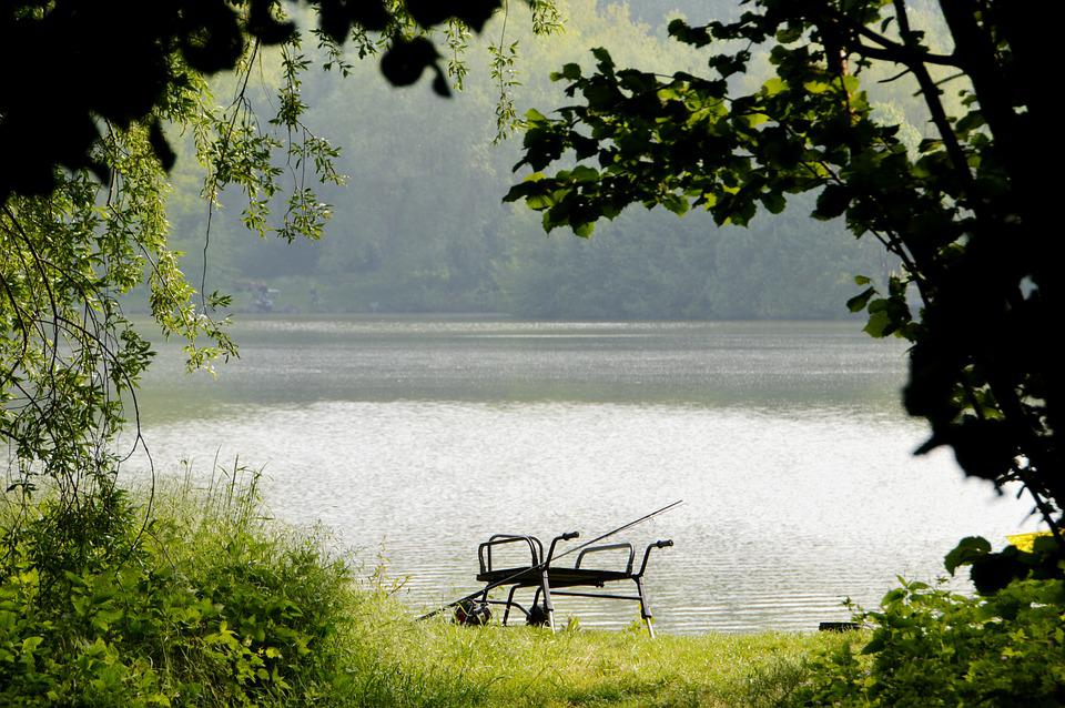 Fishing, Pond, Fishing Equipment, Pissed Off