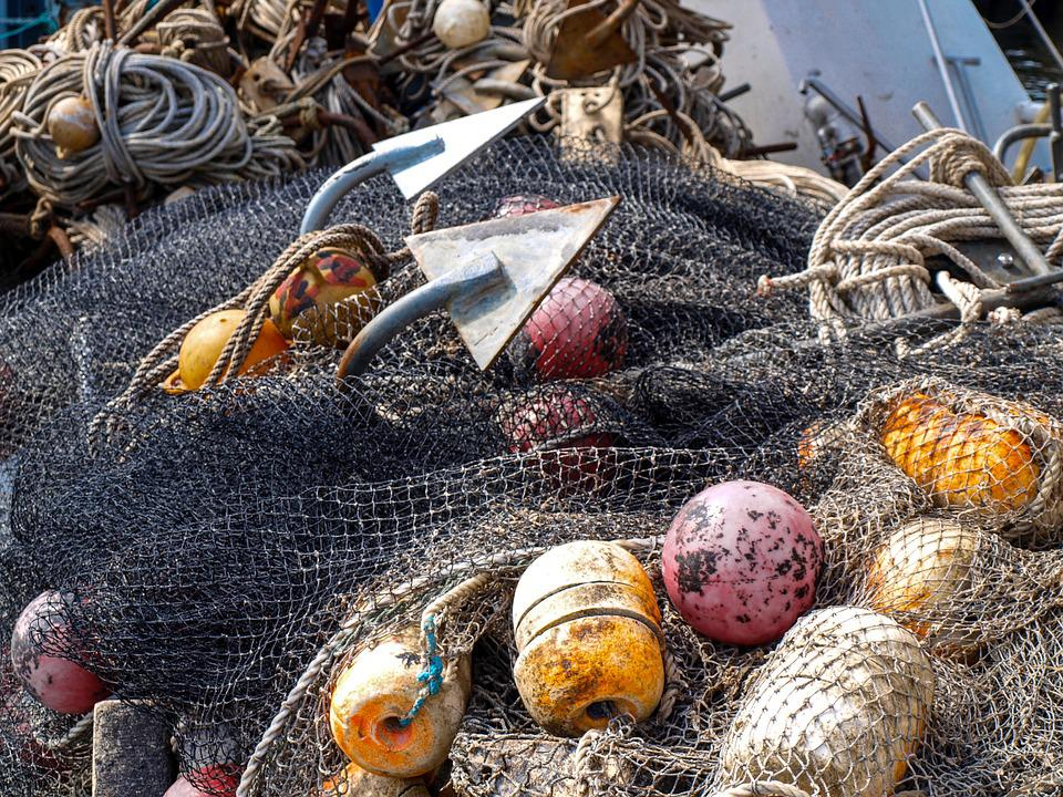 Fishing, Network, Sea, Anchor, Canvas, Fish, Safety Net