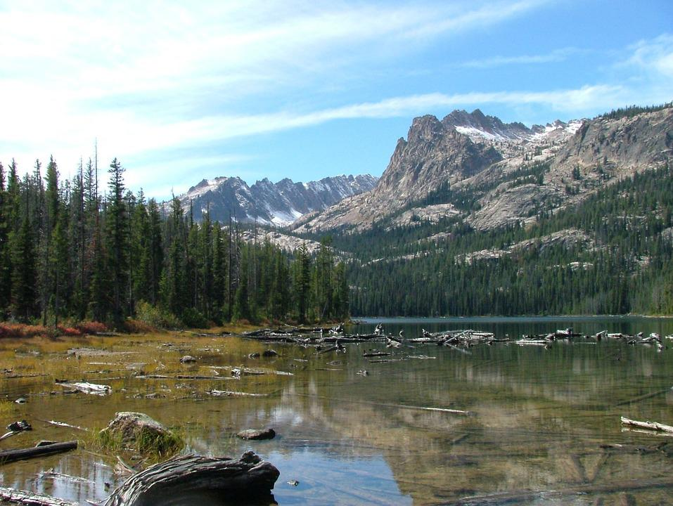 Lake, Forest, Fishing, Placid, Scenic, Mountain