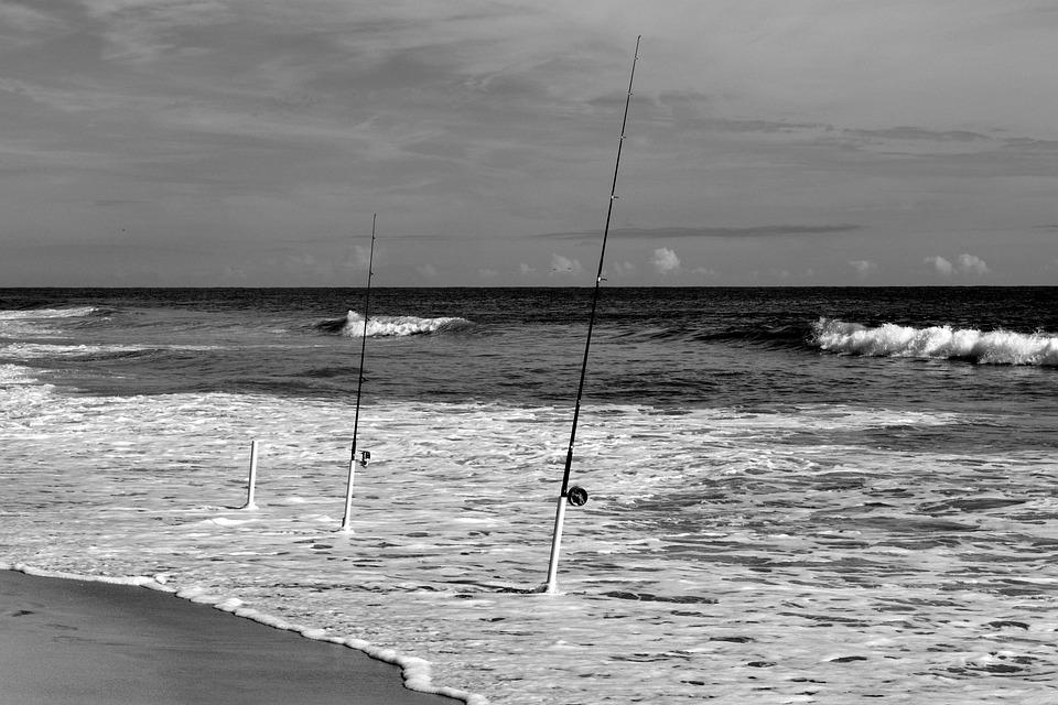 Ocean, Fishing Poles, Beach, Surf, Fishing, Water