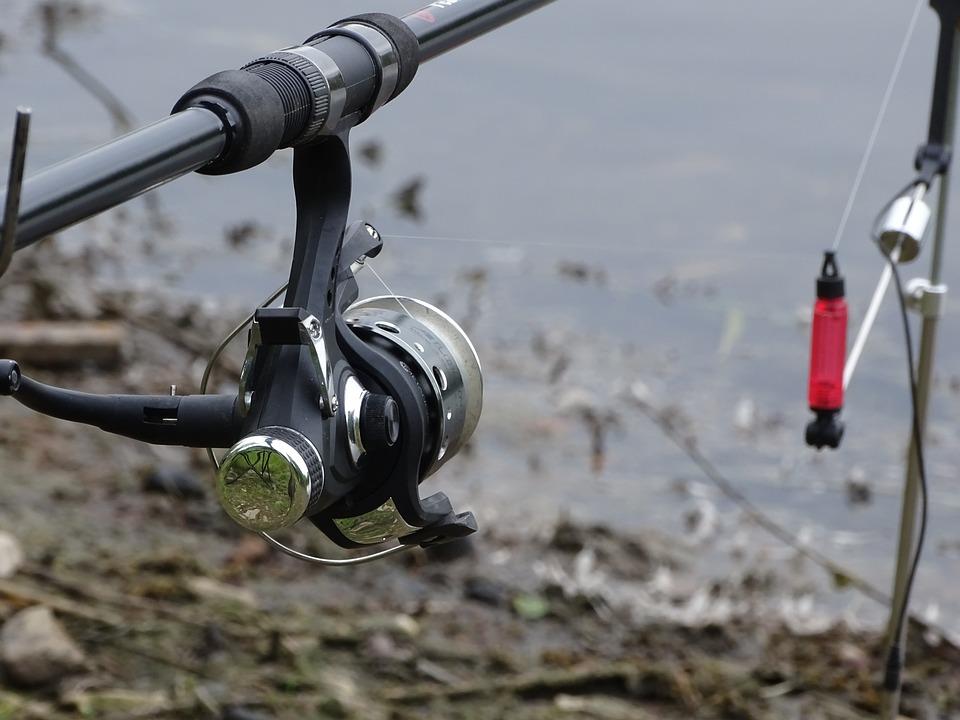 Fishing, Rod, Fisheries, South Bohemia, Reflection
