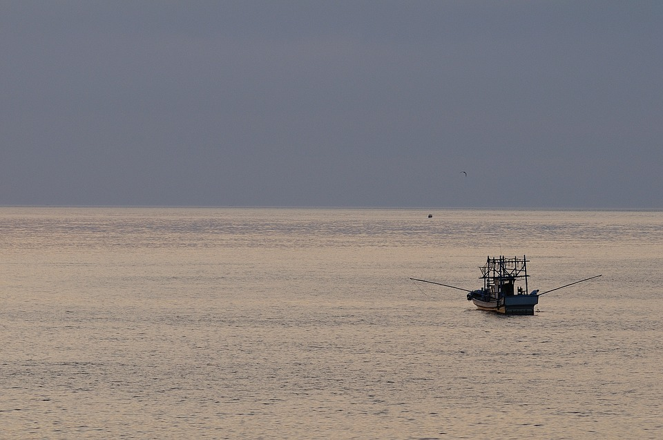 Sea, Fishermen, Ship, Fishing, Evening, Horizon
