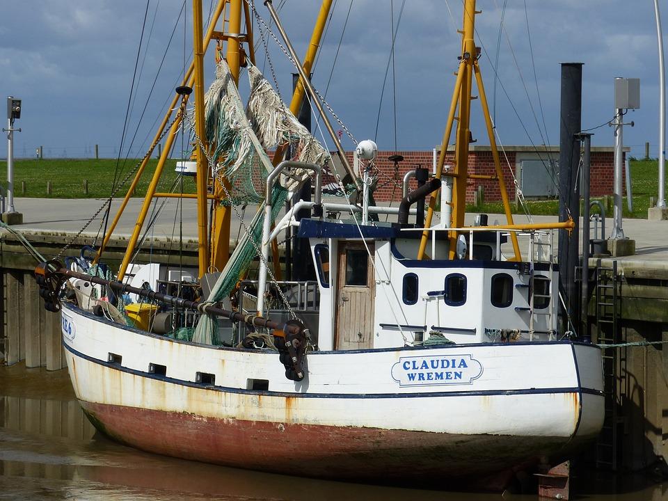 Fishing Vessel, North Sea, Shrimp, Port