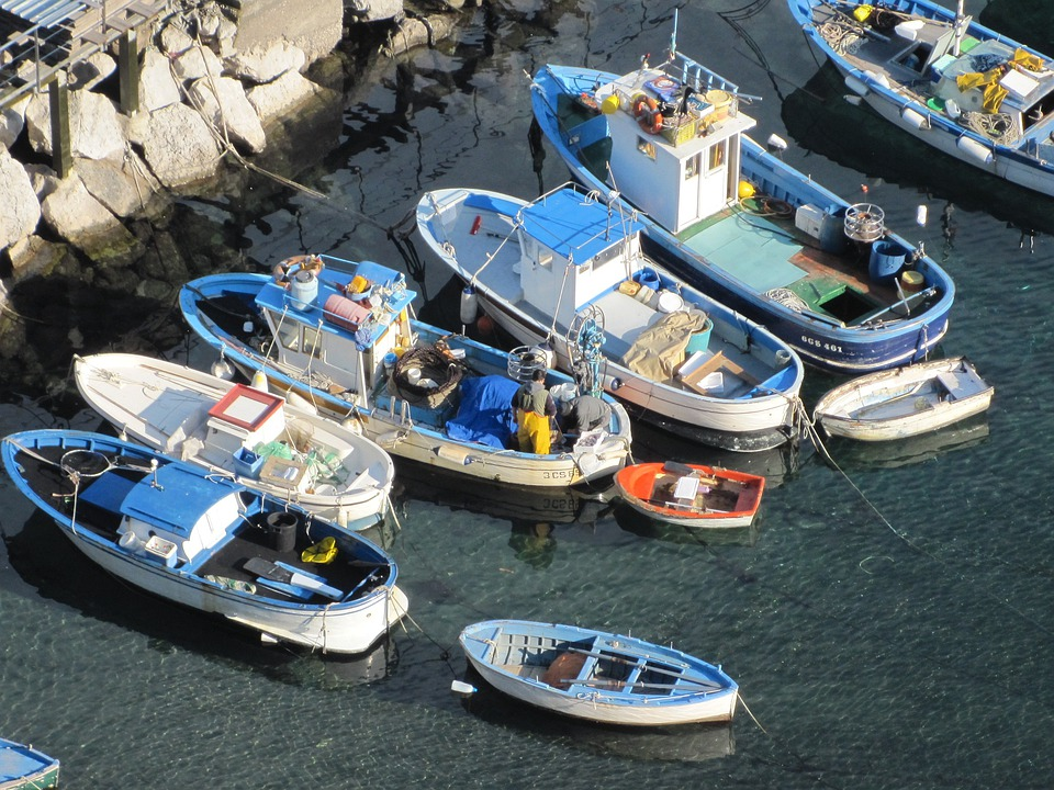 Boats, Sea, Capri, Fishing Vessels