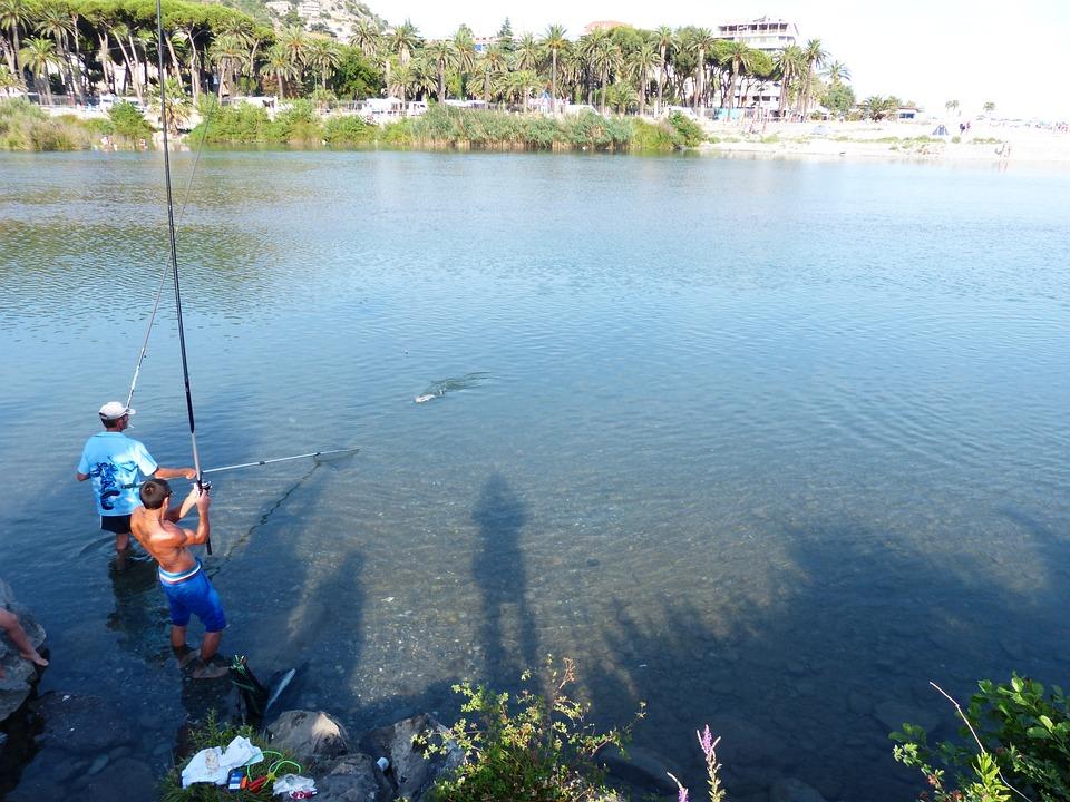 Fish, Angler, Fishing, Water, Fischer, Fishing Rod