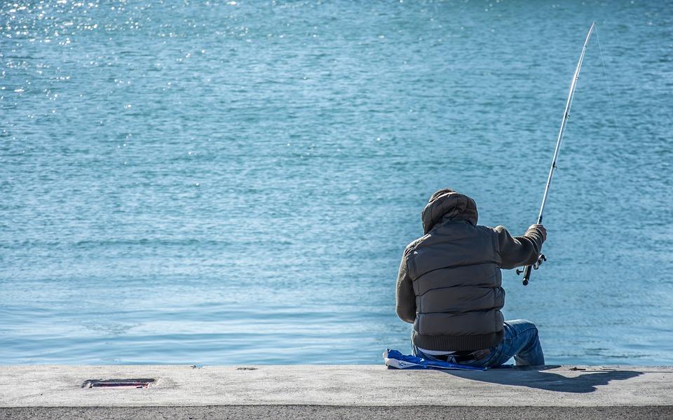 Fisherman, Fishing, Port, Fish, Sport, Catch, Water