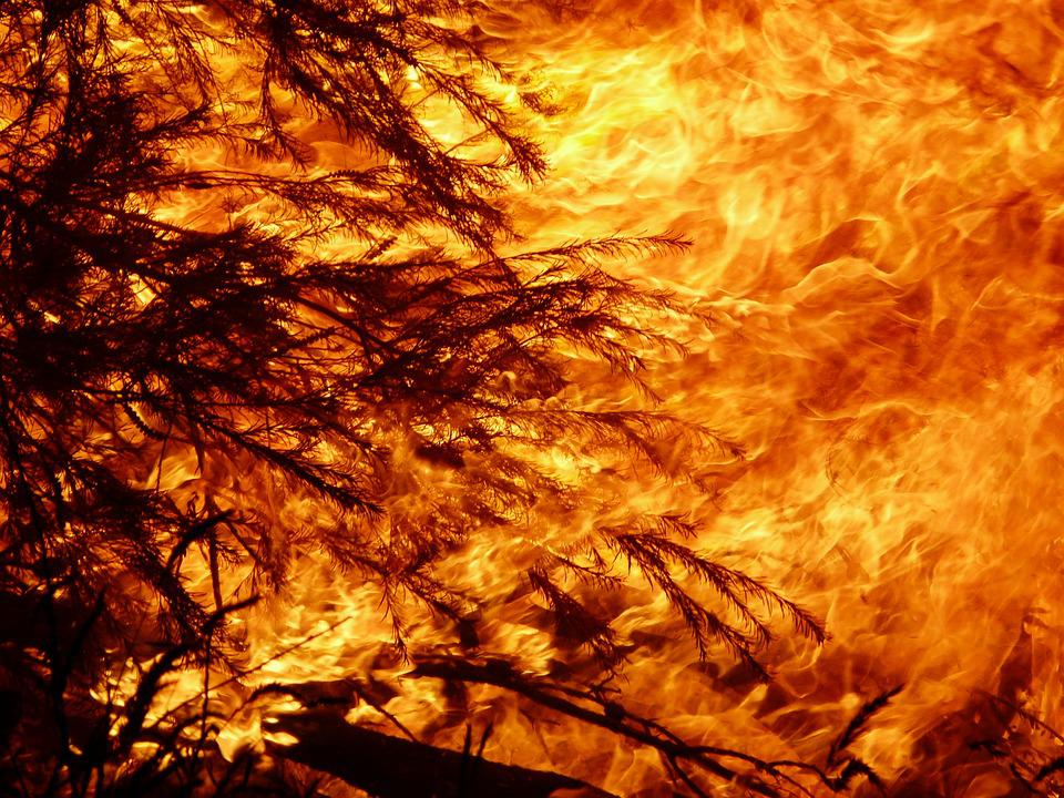 Fire, Heat, Flame, Burn, Bushfire, Bonfire