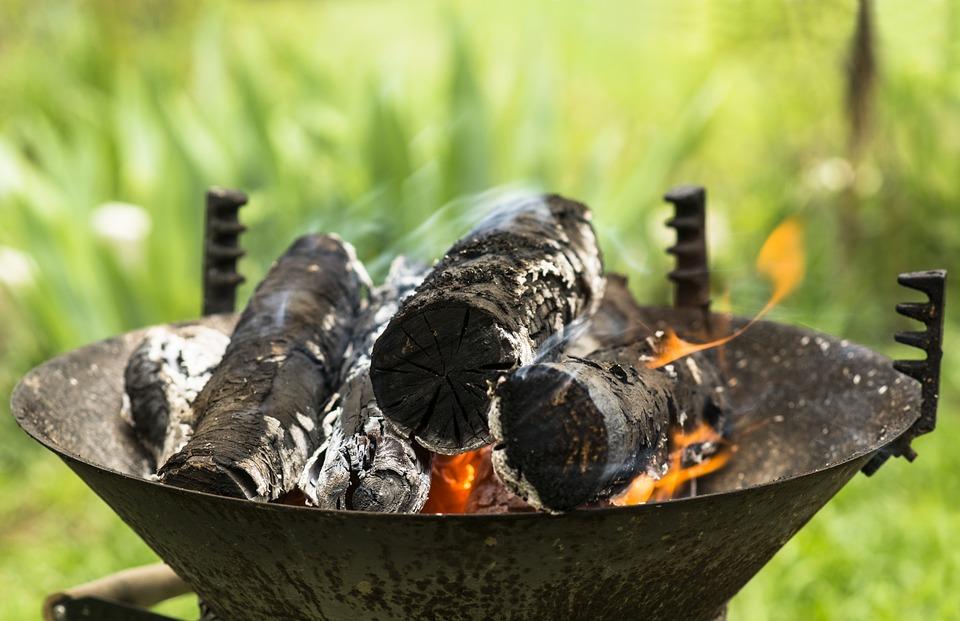 Fire, Wood, Nature, Flame, Campfire, Hot, Smoke, Flames