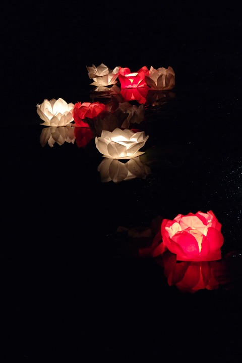 China, Float, Candle, Lotus