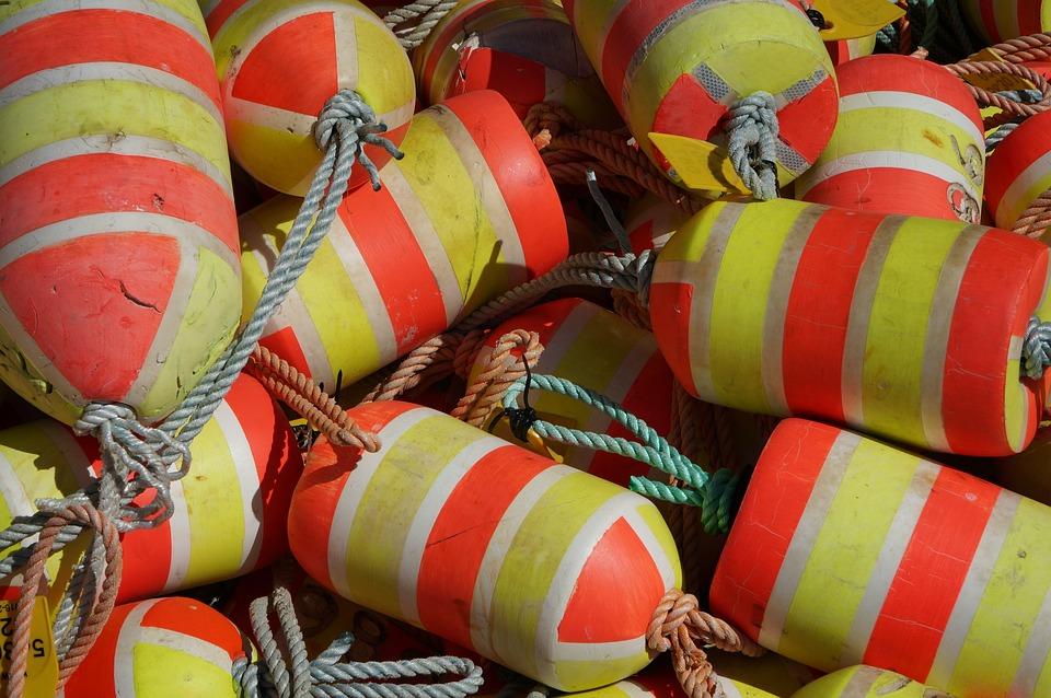 Fish, Net, Float, Food, Activity, Sea, Tackle