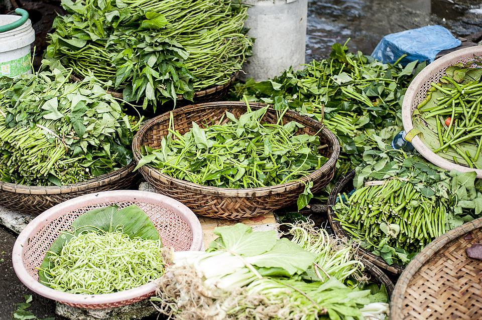 Agriculture, Close-up, Flora, Food, Freshness