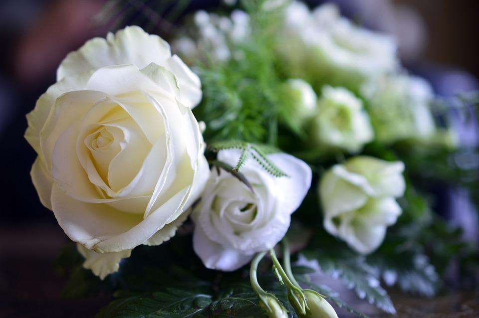 Roses, Flowers, Rose Bloom, White, Floral Arrangement