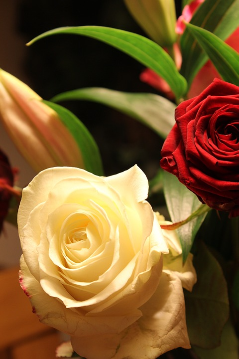 Flowers, Rose, Petal, Love, Floral, Bloom, Bunch, Group