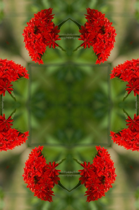 Mandala, Flower, Floral, Green, Red, Dreamy