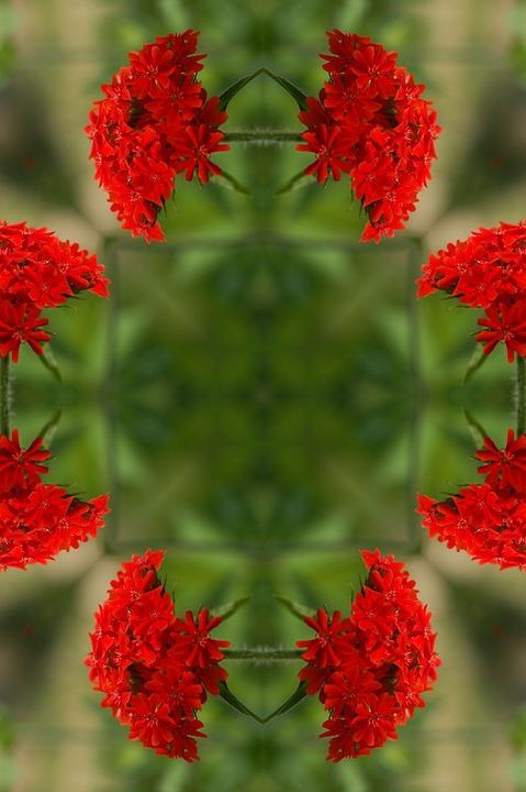 Mandala, Flower, Floral, Green, Red, Dreamy