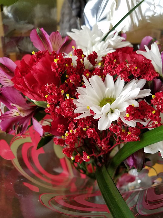 Free photo floral garden spring red bloom flowers max pixel flowers bloom floral garden spring red mightylinksfo
