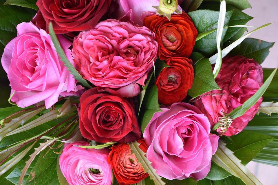 Rosebush, Flower, Bouquet Of Flowers, Petal, Floral