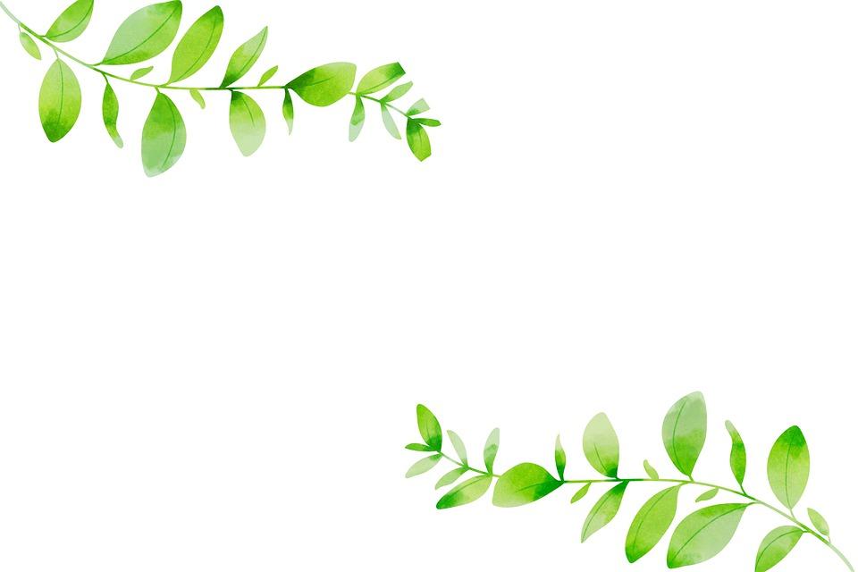 Leaves, Decor, Digital Art, Isolated, Flow, Nature