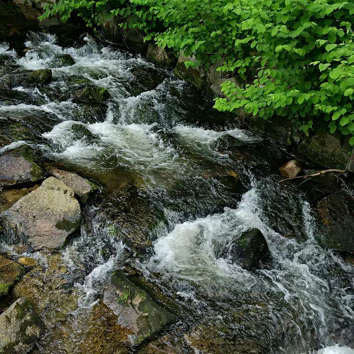 River, Fluent, Flow Water, Stones, Black Forest