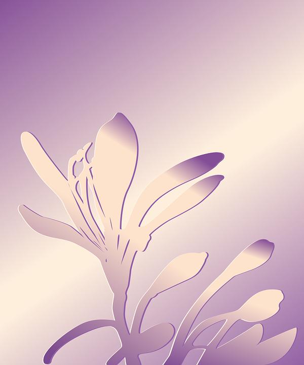 Flower, Flower Background, Silhouette, Purple, Floral