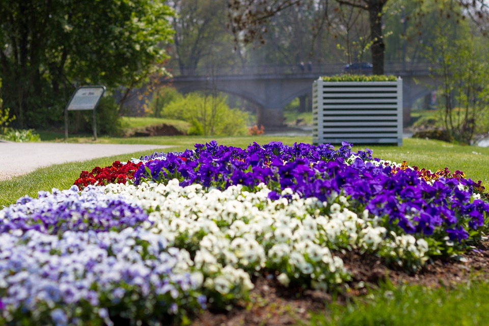 Flowers, Flower Bed, Spring, Garden, Park