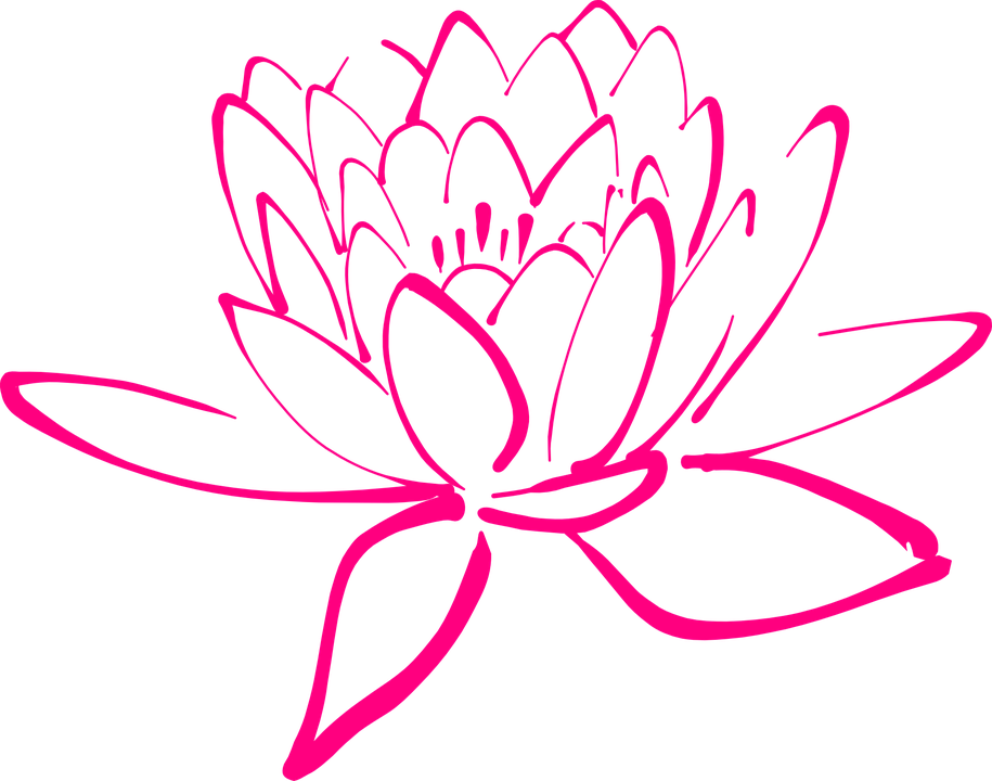 Flower, Pink, Blossom, Pegals, Lotus