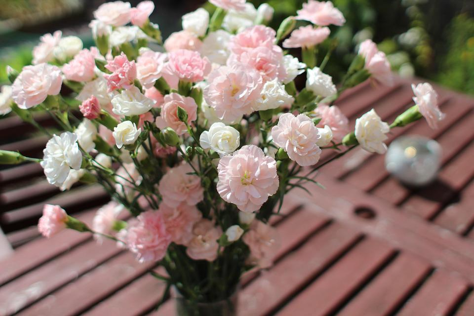 Carnation, Pink, White, Flower, Bouquet, Floral