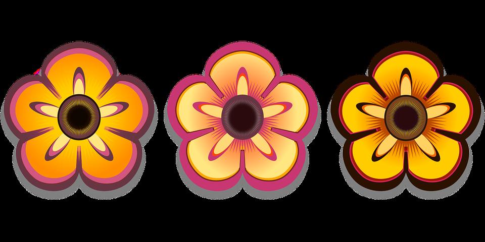 Bloom, Colorful, Flower, Petals, Plant