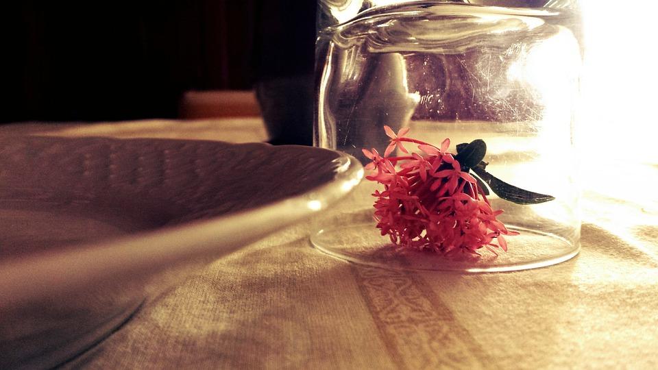 Flower, Glass, Table, Roses, Decoration, Romantic
