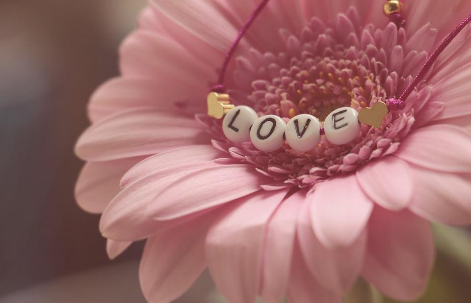 Love, Bracelet, Gerbera, Flower, Feelings, Romantic