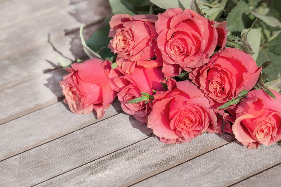 Rose, Flower, Bouquet, Petal, Romance, Love, Floral
