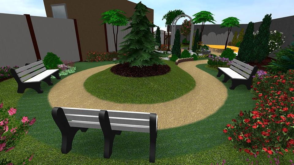 Garden, Flower, Rodam