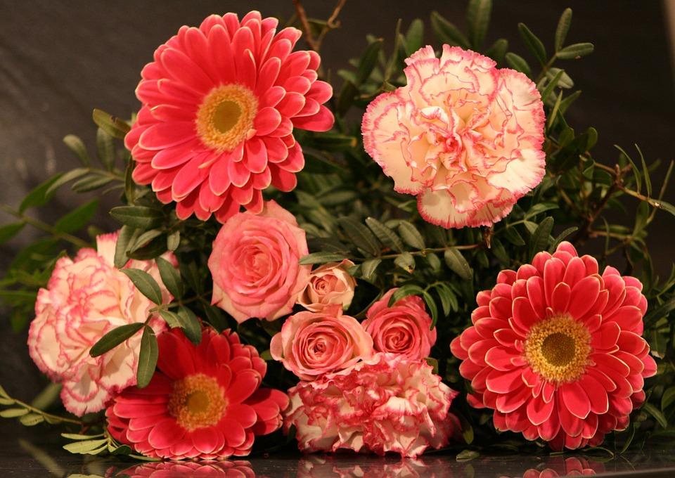 Flower, Plant, Floral, Petal, Bouquet, Rose, Gerbera