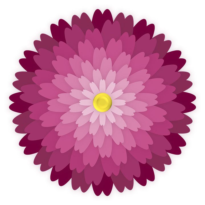 Flower, Ornament, Petals, Graphic, Element, Bloom